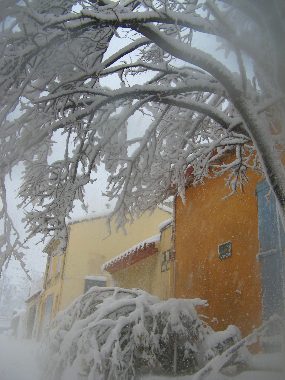 couleurs soleil   Collioure - photo M.Gassier