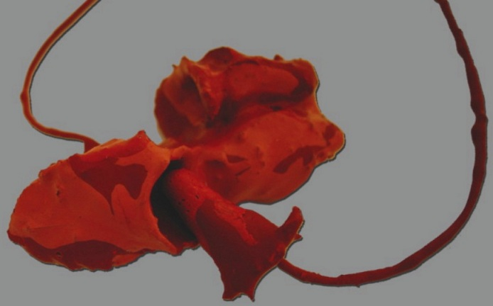 Mirla FERNANDES- necklace - 'FE-Pluto' serie